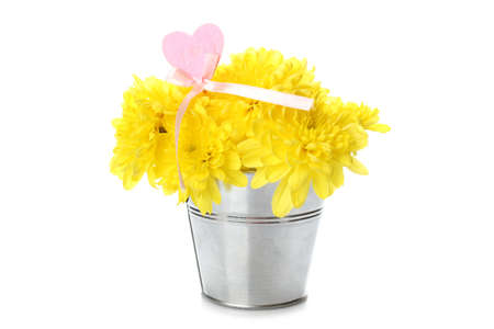 Yellow chrysanthemums in a pail Stock Photo - 9441386