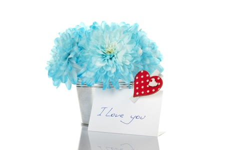 Blue chrysanthemums in a bucket with chrysanthemums next card with the text