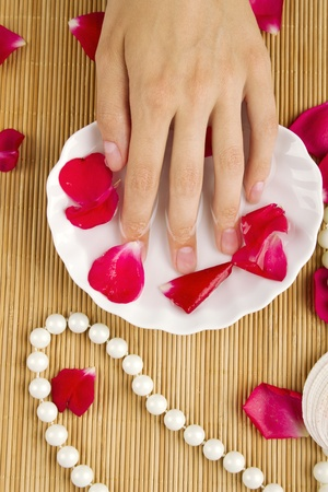 nail spa during a manicure session photo