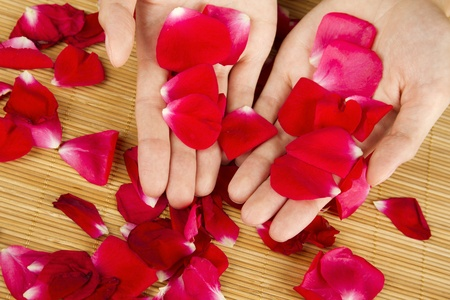 Hands on rose petals Stock Photo - 10396487