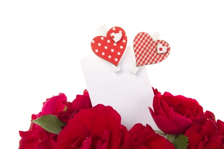 Bouquet of beautiful red roses with a blank gift card. Isolated photo