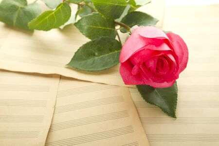 Old Sheet music sheets and a red rose. Background photo