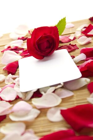 Card and roses Stock Photo - 10961081