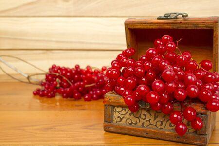 guelder rose berry: Viburnum Stock Photo