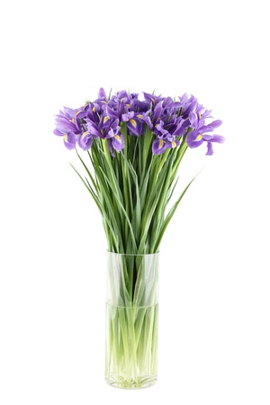 glass vase: Bouquet of irises