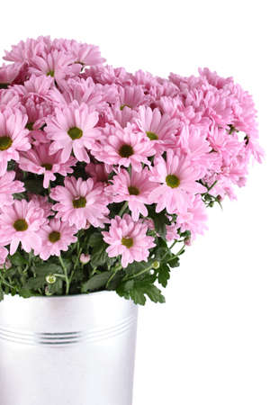 Bouquet of Chrysanthemums photo