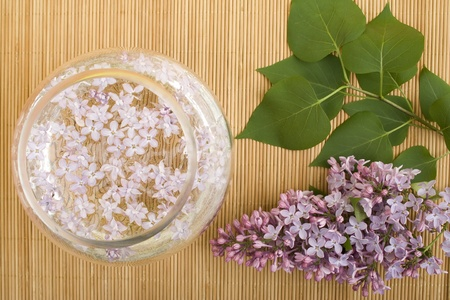 relaxion: Aromatherapy