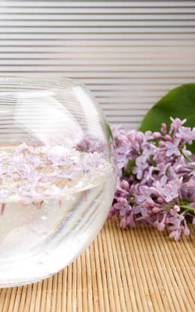 Aromatherapy Stock Photo - 12930851