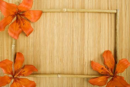 Orange tiger lily photo