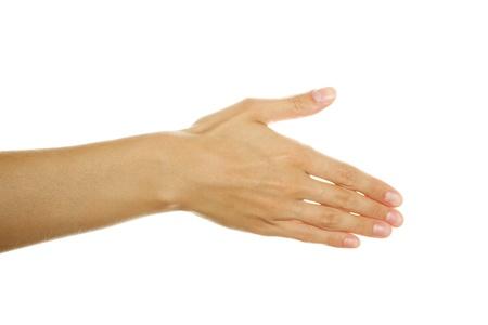 Open Hand photo