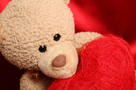 Close up of a teddy bear holding a big gift box as heart photo