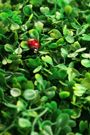 Close-up background of green grass. Artificial leaf clover photo