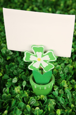 Close-up background of green grass clover. Patricks Day photo