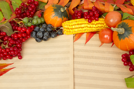 background  paper: The frame of the gifts of autumn pumpkins, corn, fall leaves, tomatoes, red berry cranberry and grapes are in the old printed music sheets