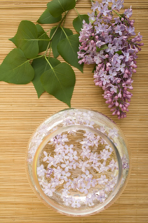 relaxion: Scenery. A branch of lilacs near the bowl with water in which floated flowers
