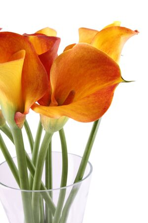 nb: Close-up of a bouquet of calla lilies in a glass vase. Isolated on white background Stock Photo