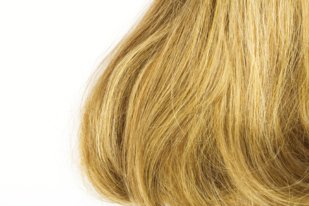 thick hair: Blonde thick hair isolated on white background