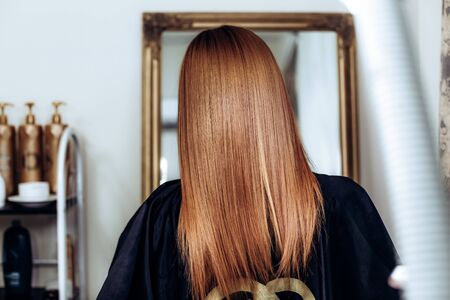 Back view of Redhead girl with long and straight brown hair . Shiny smooth hair. copypast