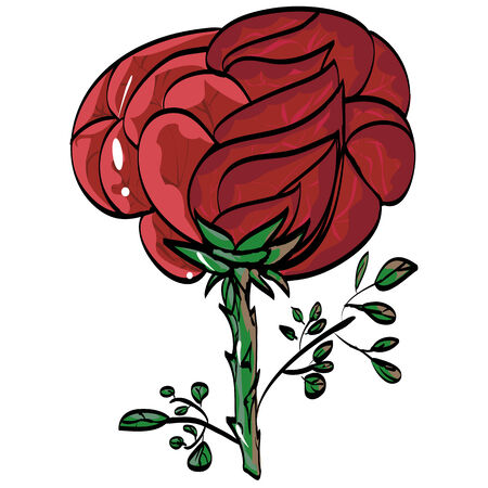 From the hand painted red rose on a stem with leaves, white background chity. Vector