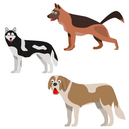 st  bernard: Set of three dog in flat style. Dog icon. Dog sign. Shepherd, st. Bernard dog, husky. Vector illustration. Illustration
