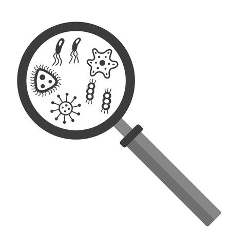 contaminant: bacteria, microbe under magnifier. Pathogen microorganism detection. Vector illustration