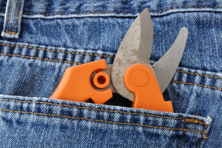 pruning shears: Close-up of Pruning Shears in Blue Jeans Pocket