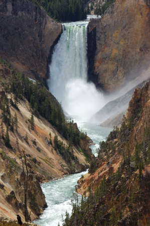 lower yellowstone falls: Lower Yellowstone Falls in Yellowstone National Park