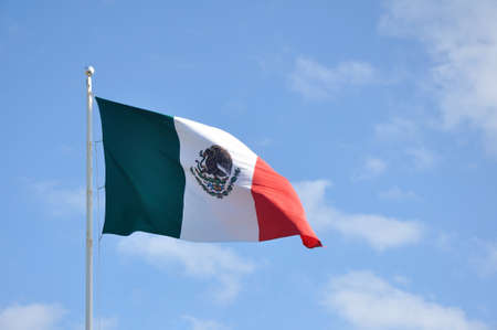The Flag of Mexico Waving in the Breeze photo