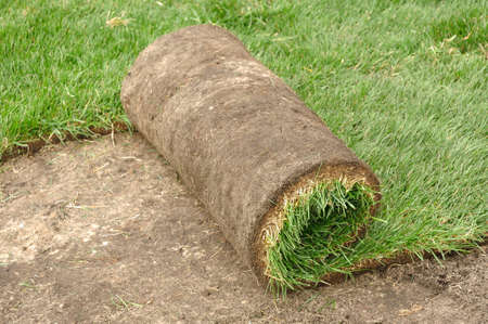Unrolling Sod for a New Lawn photo