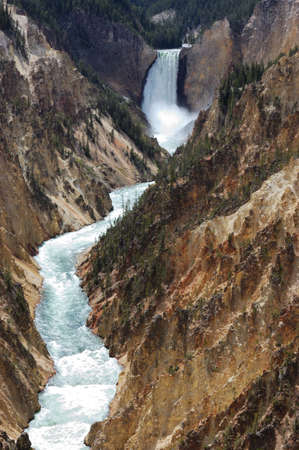 yellowstone: Lower Yellowstone Falls in Yellowstone National Park