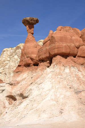 geological: Paria Rimrocks Red Toadstool  Hoodoo  in Southern Utah