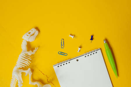 Plastic white dinosaur skeleton, Notepad, paper clips and pen. Set for studying and describing excavations of dinosaurs and ancient animals