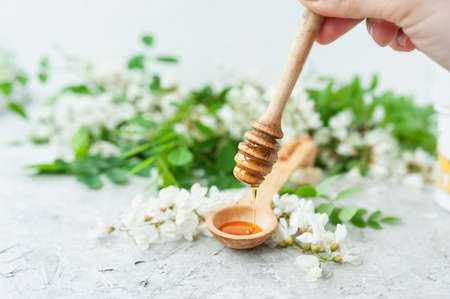 Acacia honey flows from a wooden stick into a wooden spoon with lush blooming white acacia flowers in the background, analog medicine, useful properties of plants 版權商用圖片
