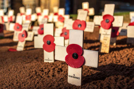 Remembrance Day - wooden crosses with poppies photo