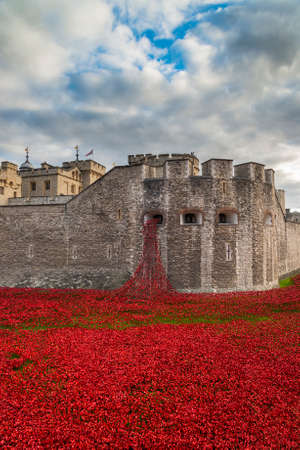 Tower of London and art installation - Blood Swept Lands and Seas of Red sees 888,246 ceramic poppies planted in the Tower