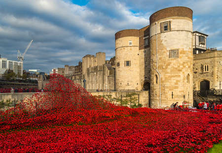 remembrance day poppy: Tower of London and art installation - Blood Swept Lands and Seas of Red sees 888,246 ceramic poppies planted in the Tower
