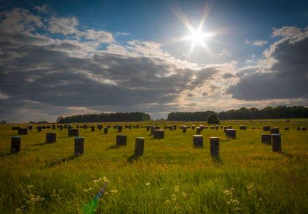 neolithic: The Woodhenge Neolithic timber circle monument
