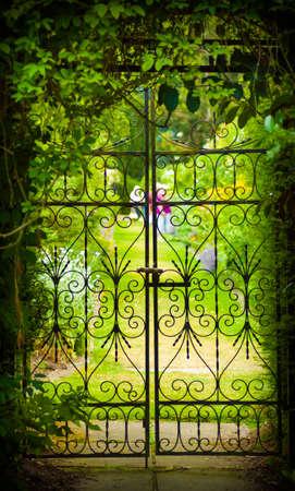 A gate hides a green, flower-filled garden