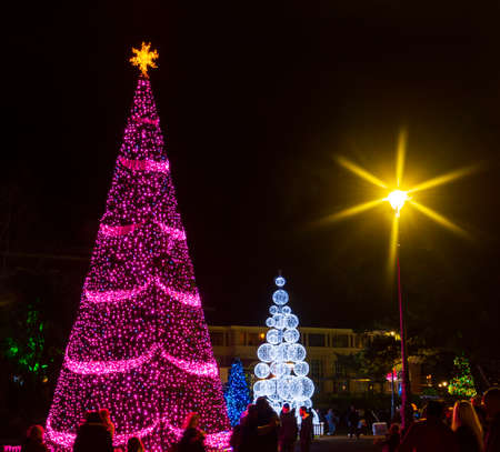 Dozens of Christmas trees line the streets and parks of Bournemouth Stok Fotoğraf - 119118397