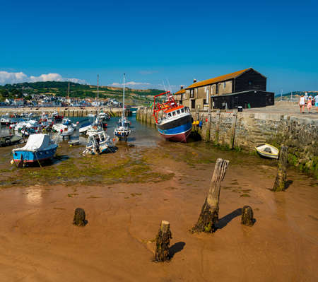 View of Lyme Regis Cobb and Harbour Stok Fotoğraf - 119118519