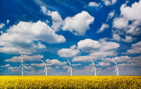 Five wind turbines in a field of oilseed rape under blue skies
