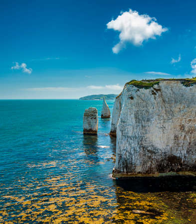 White chalk cliffs of Old Harry Rocks in Dorset