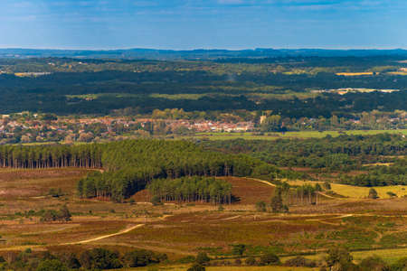 The Saxon walled town of Wareham in Dorset seen across a forest and the Frome flood plain