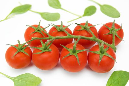 Cherry tomatoes on the vine over white photo