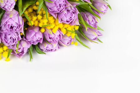 Bouquet of lilac tulips and yellow mimosas on white background, copy space, side view, closeup. March 8, February 14, birthday, Valentine's, Mother's, Women's day celebration, spring concept.