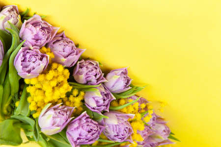 Bouquet of lilac tulips and yellow mimosas on yellow background, copy space, top view, closeup. March 8, February 14, birthday, Valentine's, Mother's, Women's day celebration, spring concept. Archivio Fotografico
