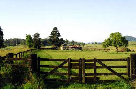old farm: Old Farm Gates - Cedar Creek NSW