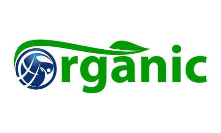Organic Letter