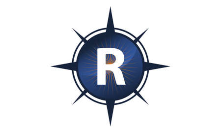 insights: Insights Guide Initial R