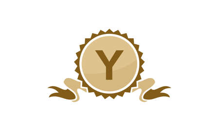 Best Quality Ribbon Letter Y